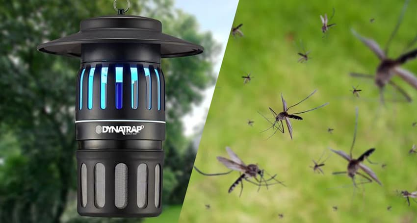 outdoor mosquito traps