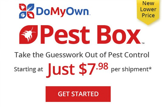 do my own pest box