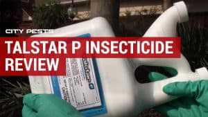 Talstar P Insecticide Review